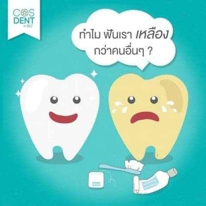 ทำไม ฟันบางคนเหลืองกว่าคนอื่น