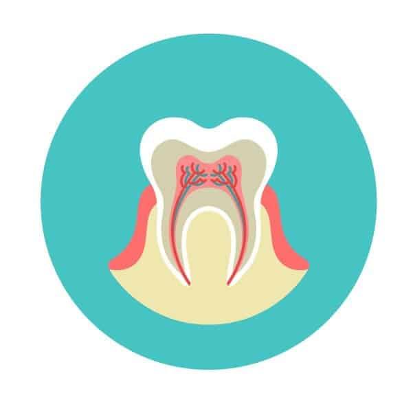 ทันตกรรม รักษารากฟัน - root canal treatment